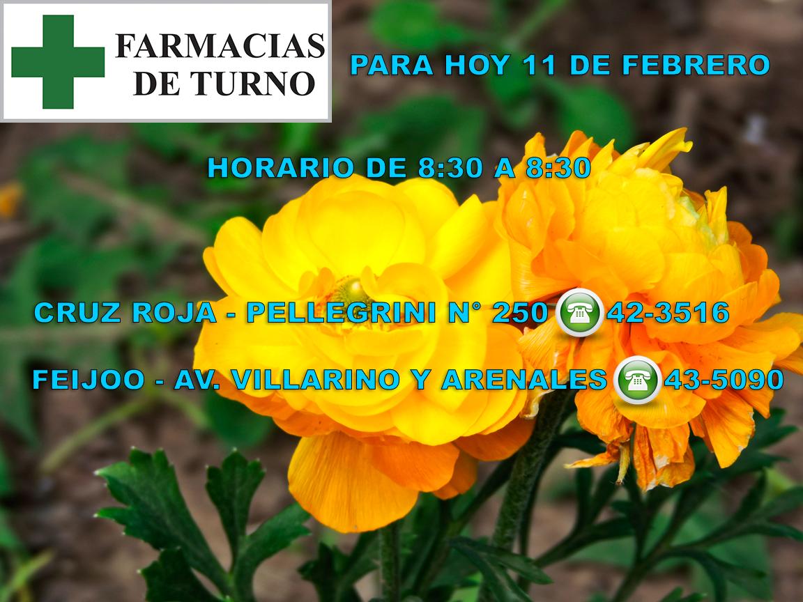 FARMACIAS11-2