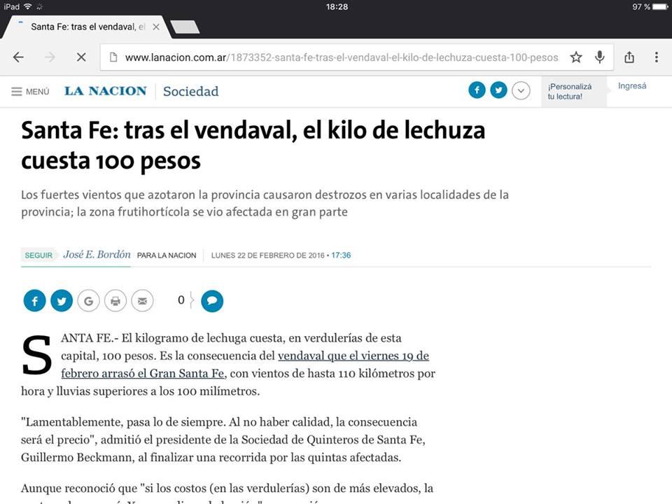 Noticias_chivilcoy_kilo de lechuza