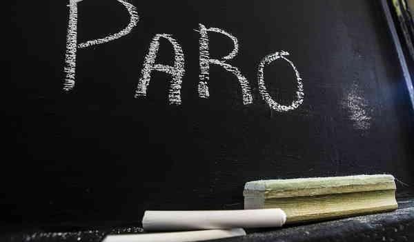 Paro-600x351