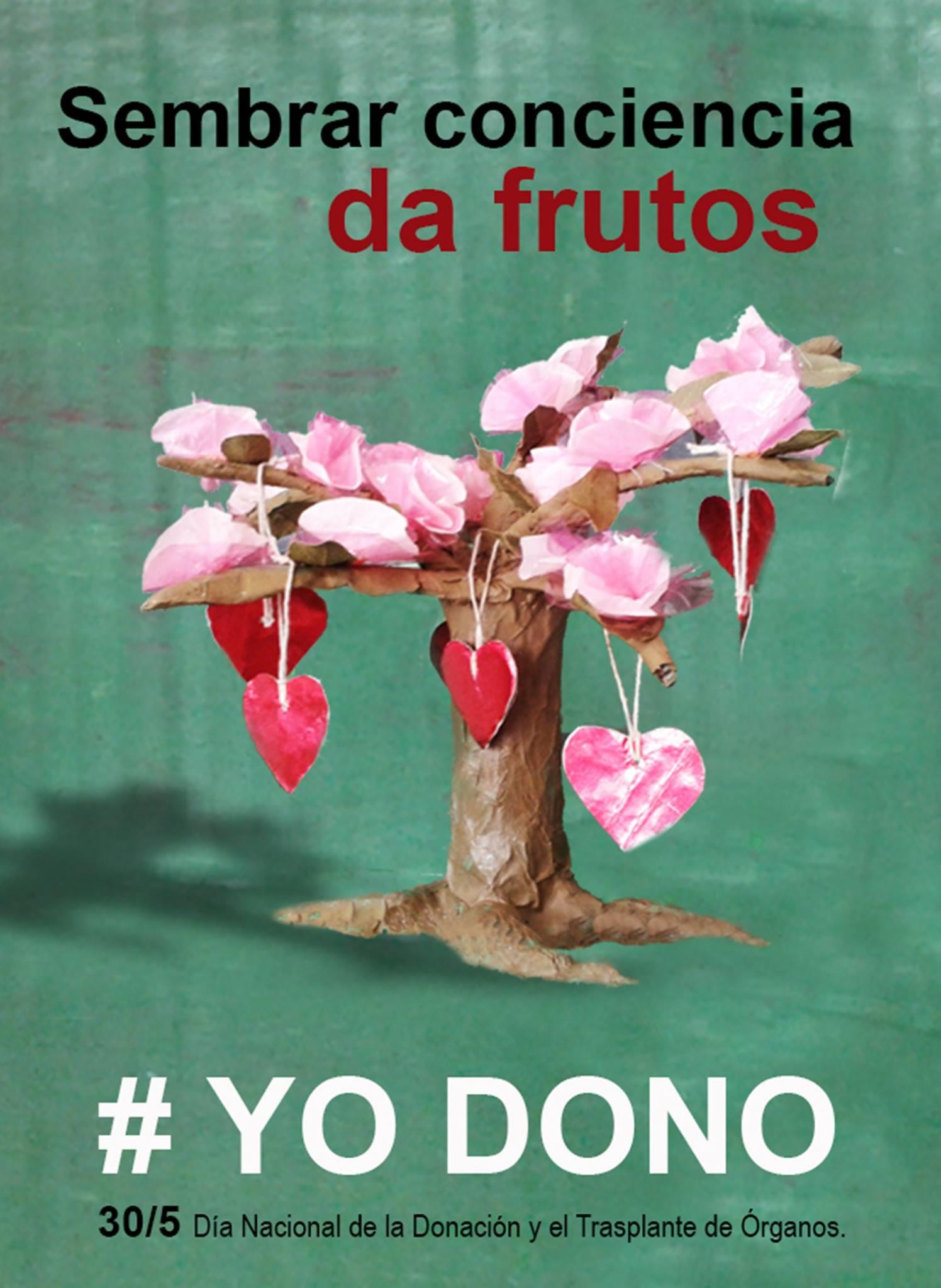 30-05-2016 - donación de órganos3