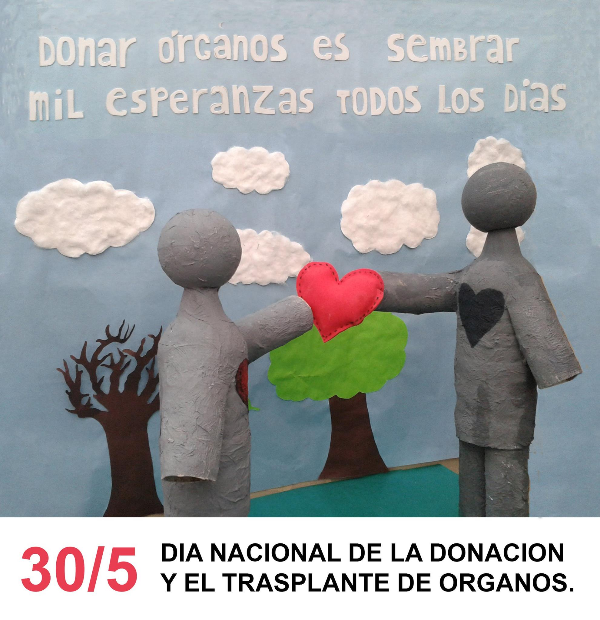 30- 05-2016 - donacion de órganos 2
