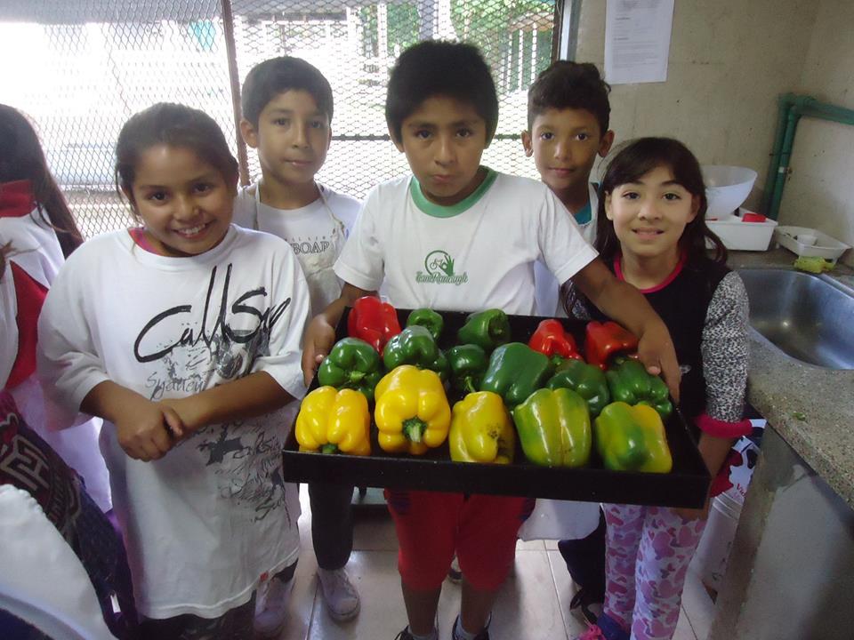 19-07-2016- Berazategui una cooperativa escolar que no para de cosechar III