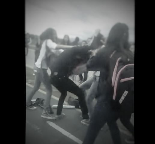 pelea chicos